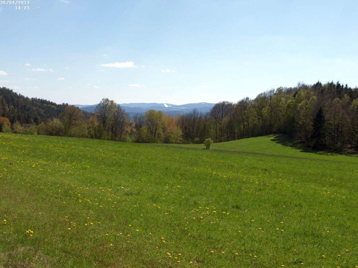 http://www.bayerwaldwandern.de/2017/30april010.JPG