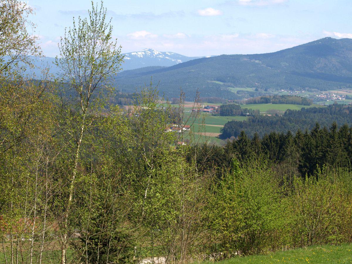 http://www.bayerwaldwandern.de/2017/30april012.JPG