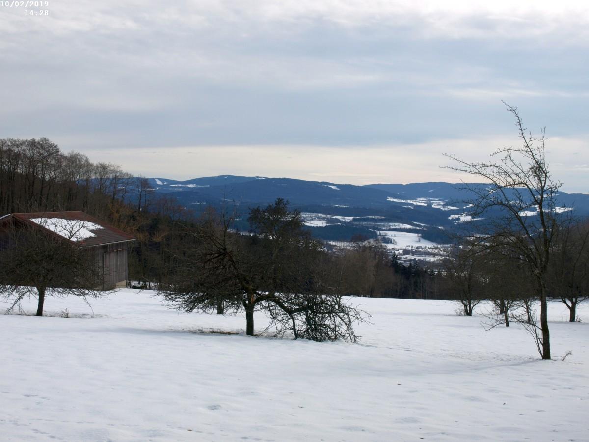 http://www.bayerwaldwandern.de/2019/10feb19005.JPG