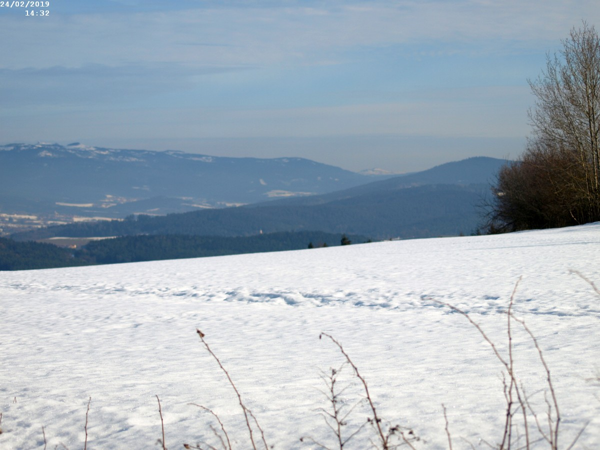 http://www.bayerwaldwandern.de/2019/24feb19__14.jpg
