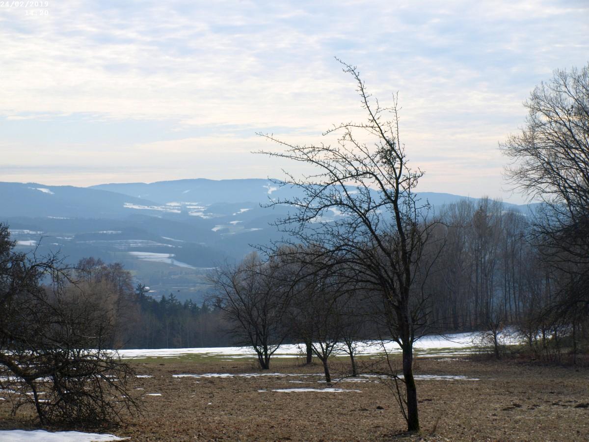 http://www.bayerwaldwandern.de/2019/24feb19__3.jpg