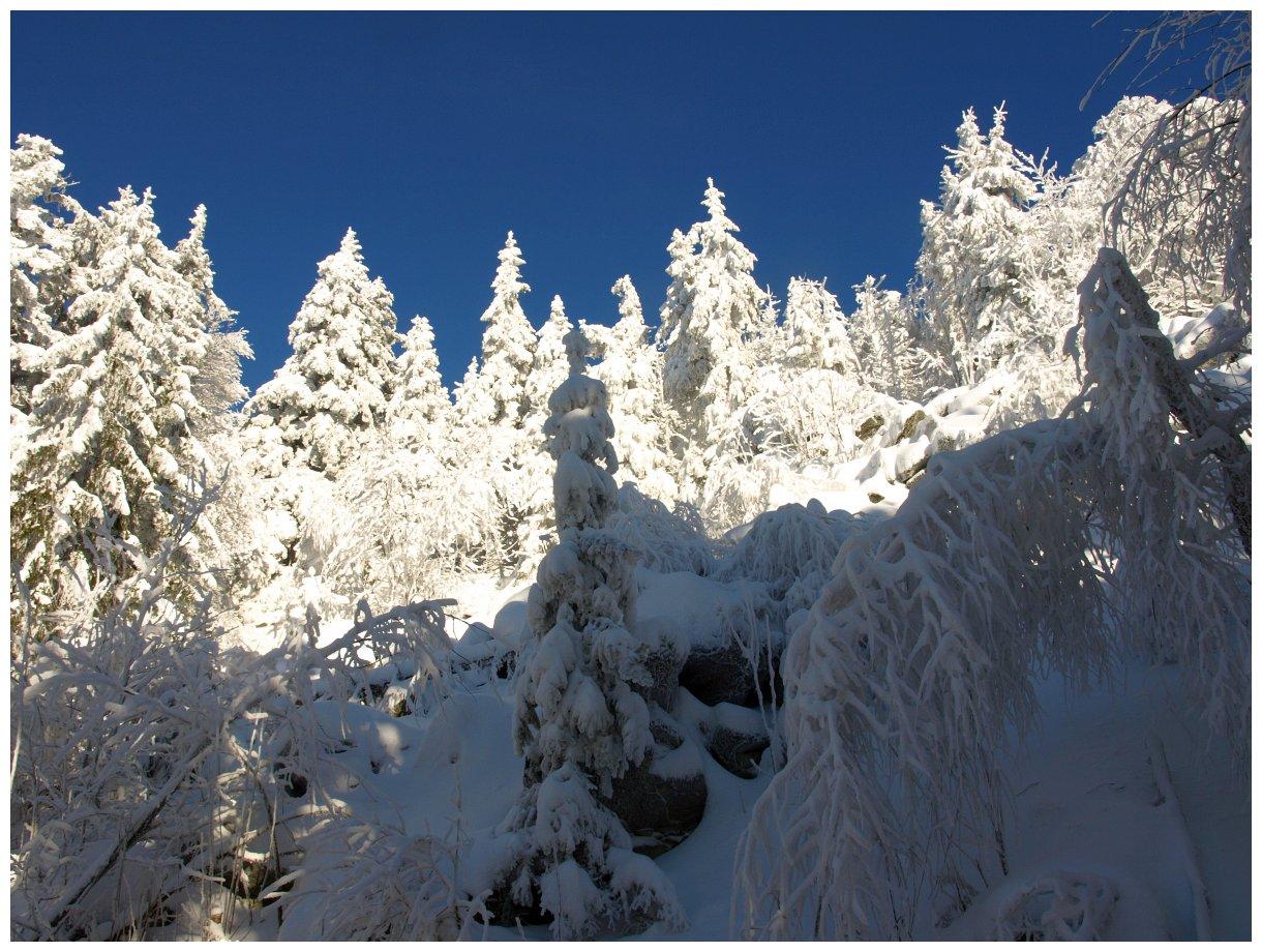 http://www.bayerwaldwandern.de/Januar15/6jan15_13.jpg