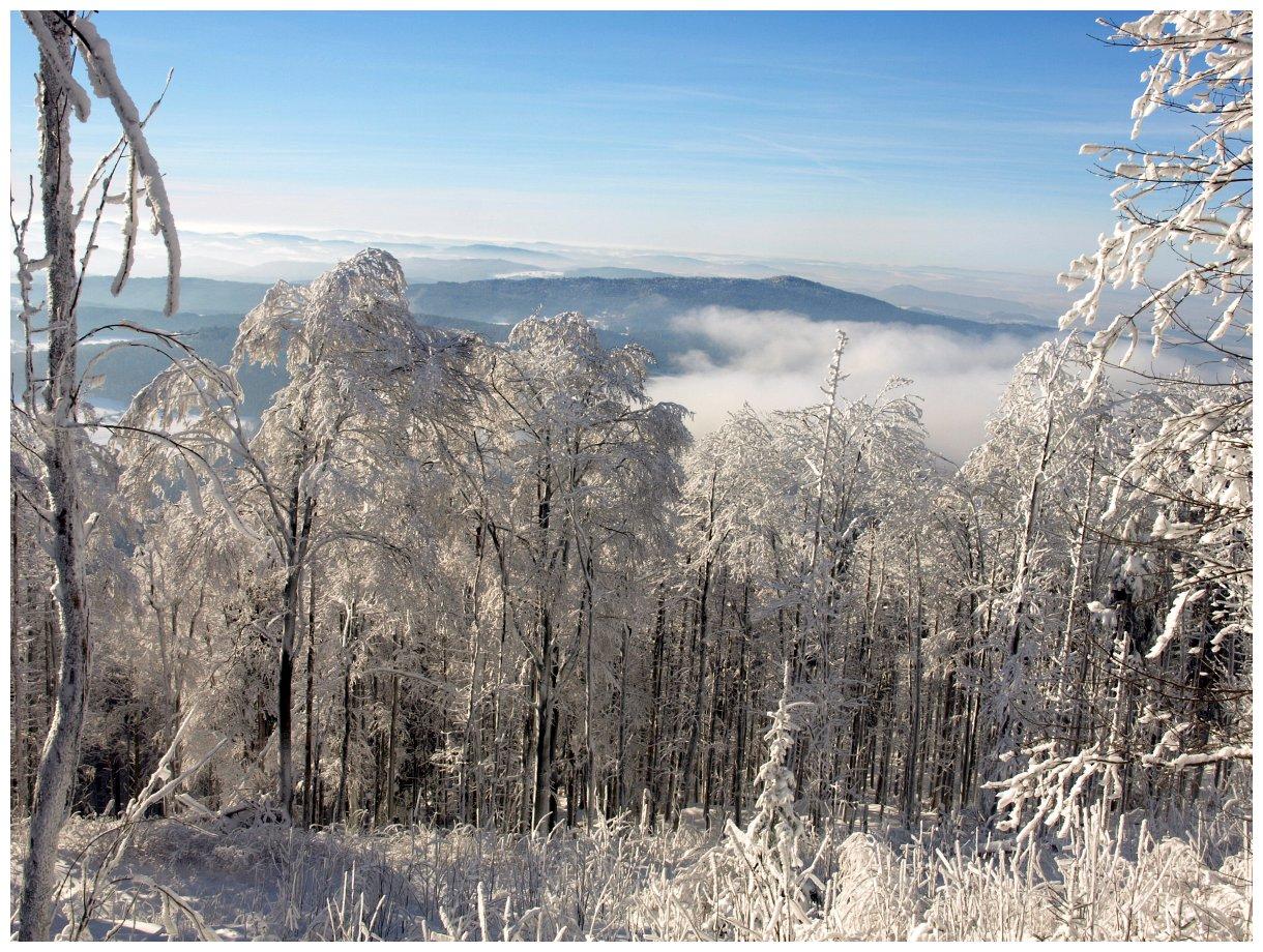 http://www.bayerwaldwandern.de/Januar15/6jan15_17.jpg