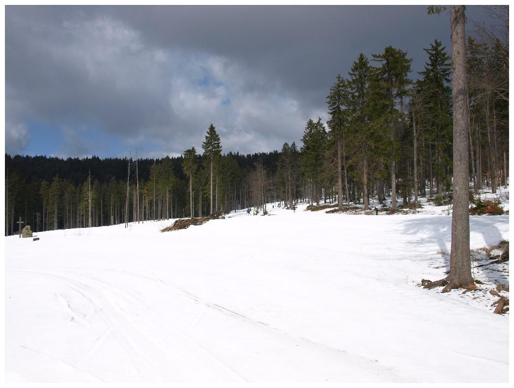http://www.bayerwaldwandern.de/april12/1april12_03.jpg