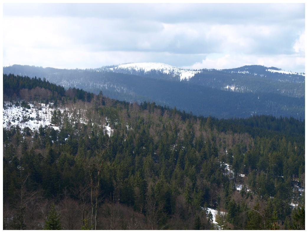 http://www.bayerwaldwandern.de/april12/1april12_17.jpg