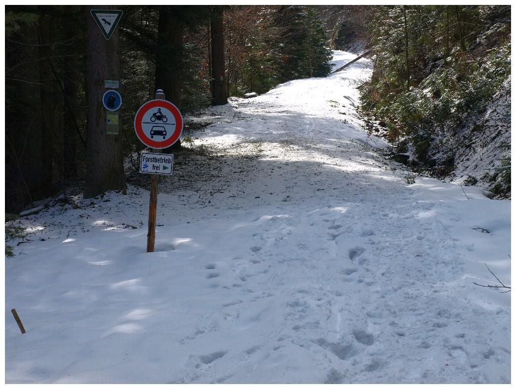 http://www.bayerwaldwandern.de/april12/9april12_09.jpg