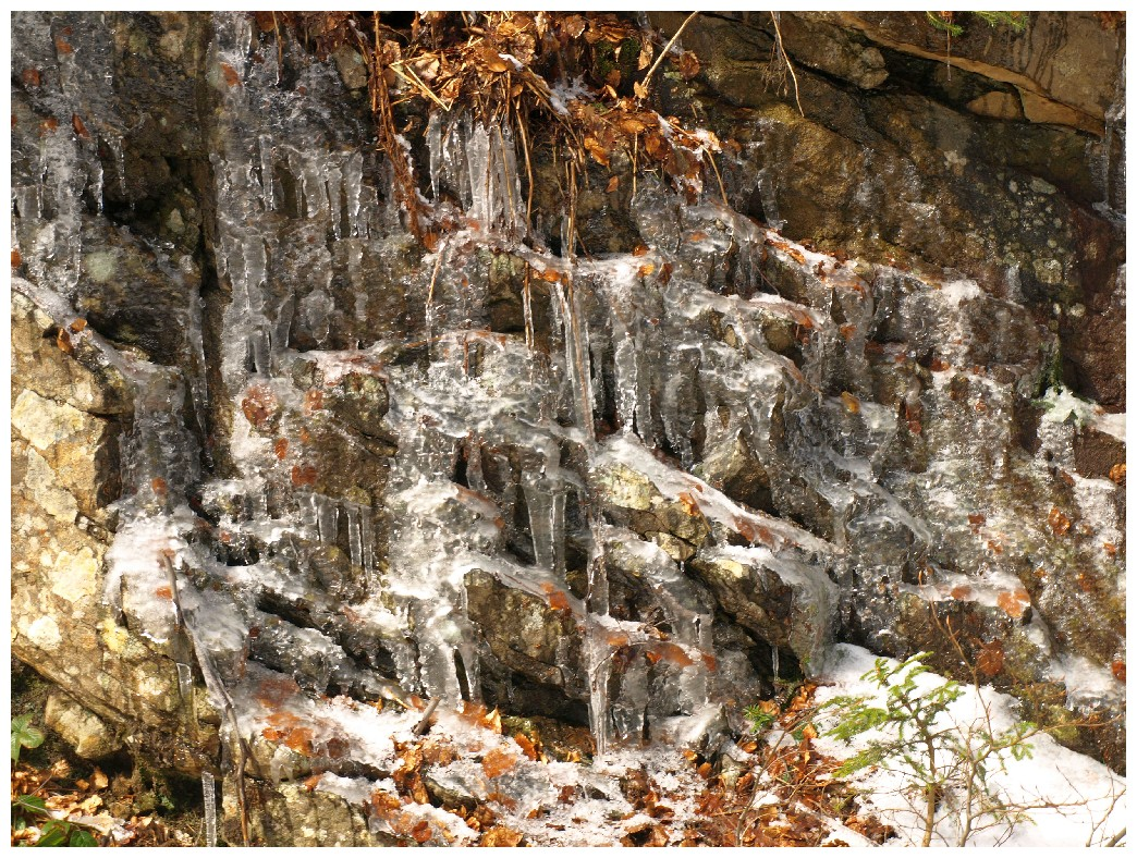 http://www.bayerwaldwandern.de/april12/9april12_10.jpg