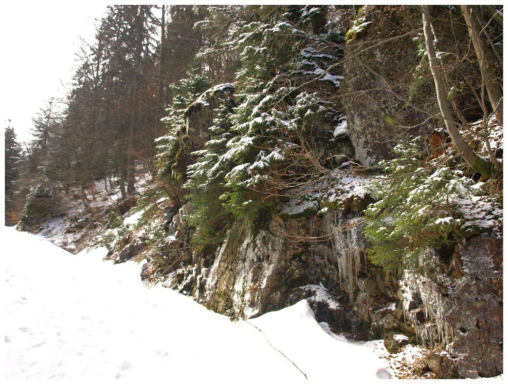 http://www.bayerwaldwandern.de/april12/9april12_12.jpg