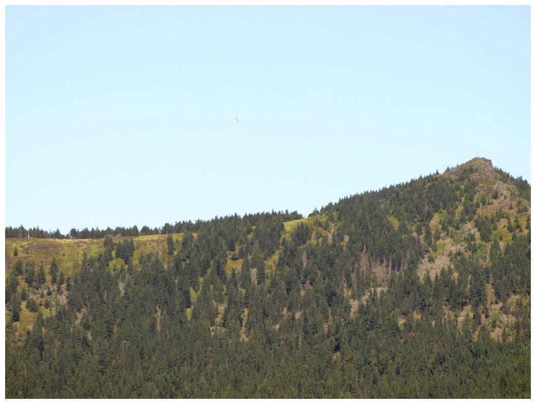 http://www.bayerwaldwandern.de/august12/5aug12_09.jpg