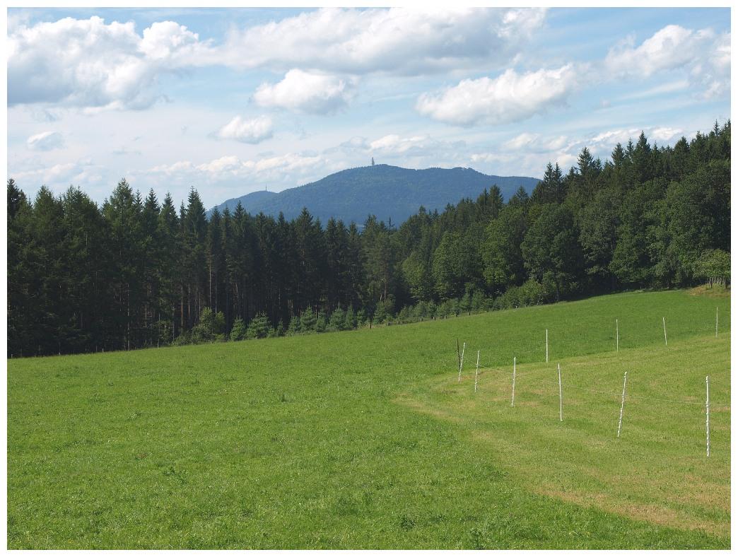 http://www.bayerwaldwandern.de/august12/5aug12_13.jpg
