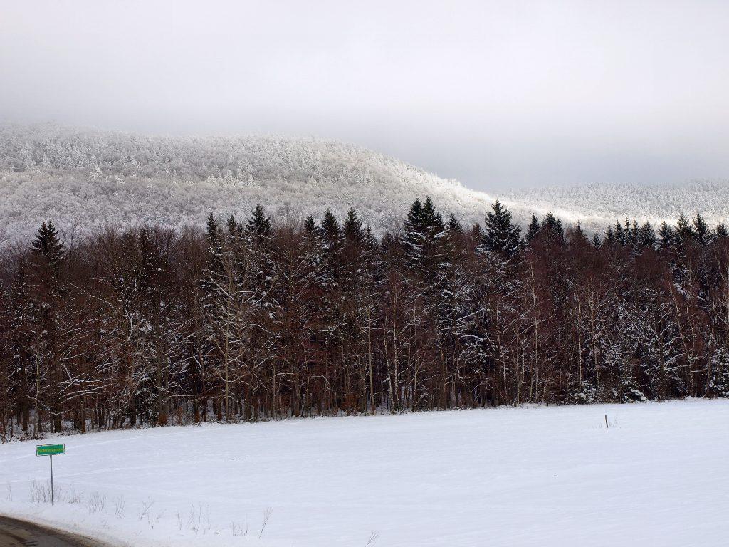 http://www.bayerwaldwandern.de/januar10/16jan10_01.jpg