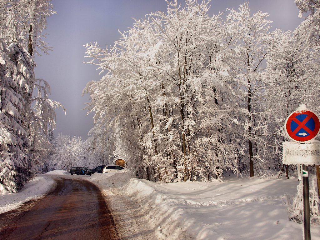 http://www.bayerwaldwandern.de/januar10/16jan10_13.jpg