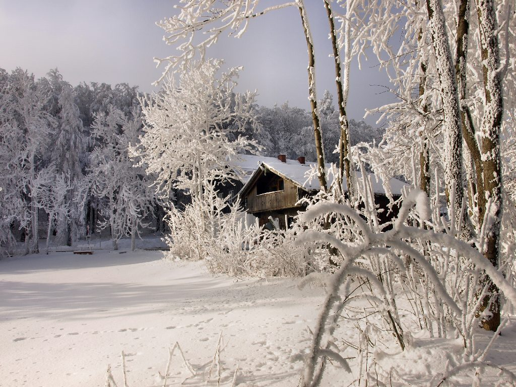 http://www.bayerwaldwandern.de/januar10/16jan10_14.jpg