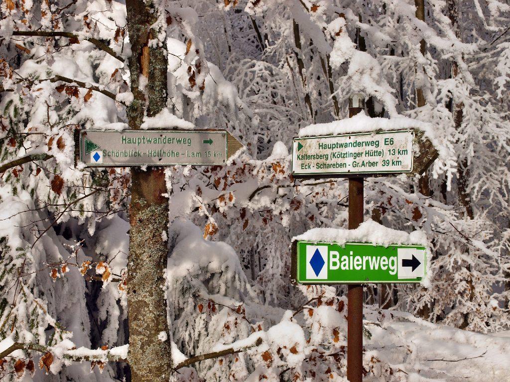 http://www.bayerwaldwandern.de/januar10/16jan10_15.jpg