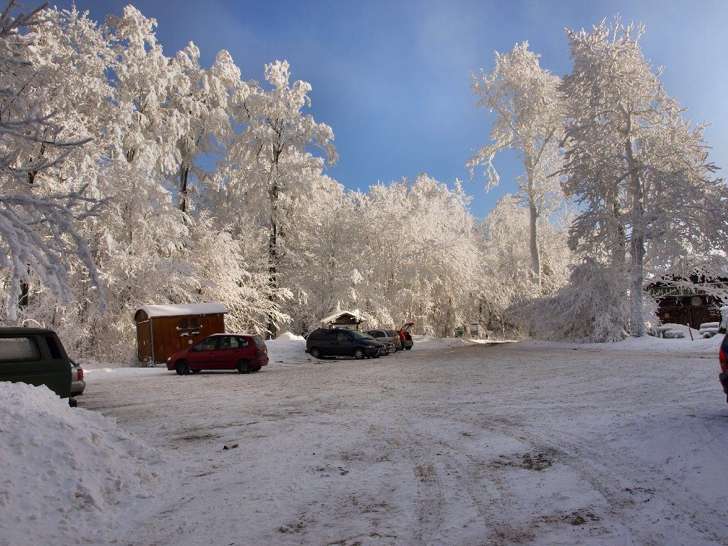 http://www.bayerwaldwandern.de/januar10/16jan10_20.jpg