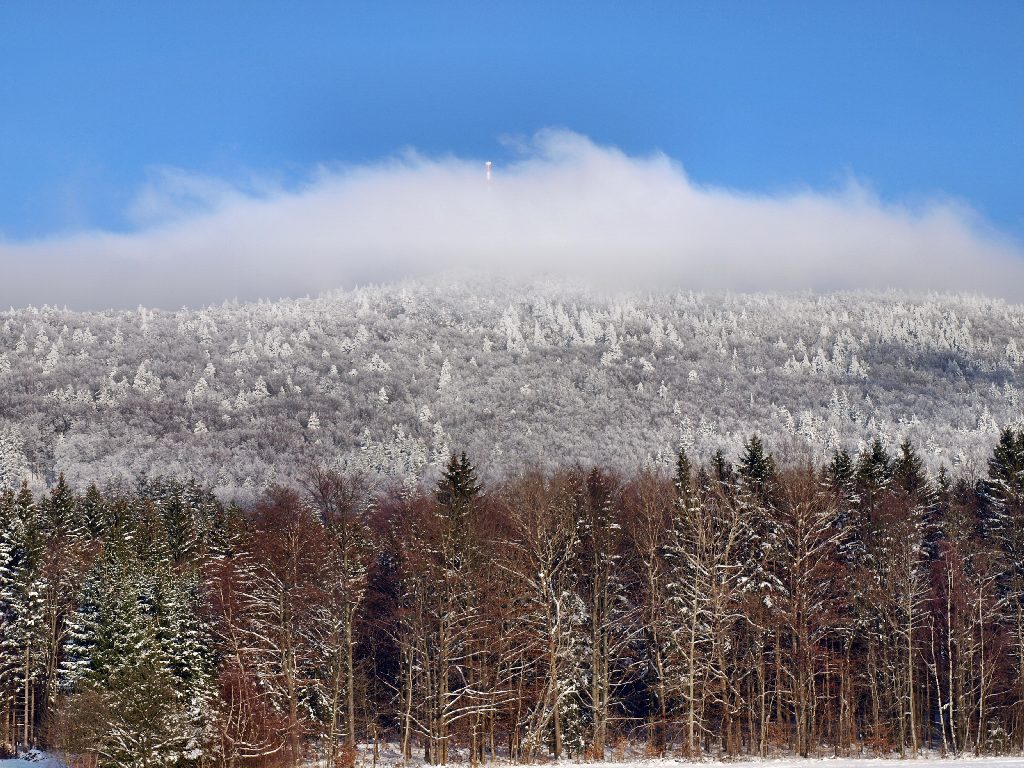 http://www.bayerwaldwandern.de/januar10/16jan10_23.jpg