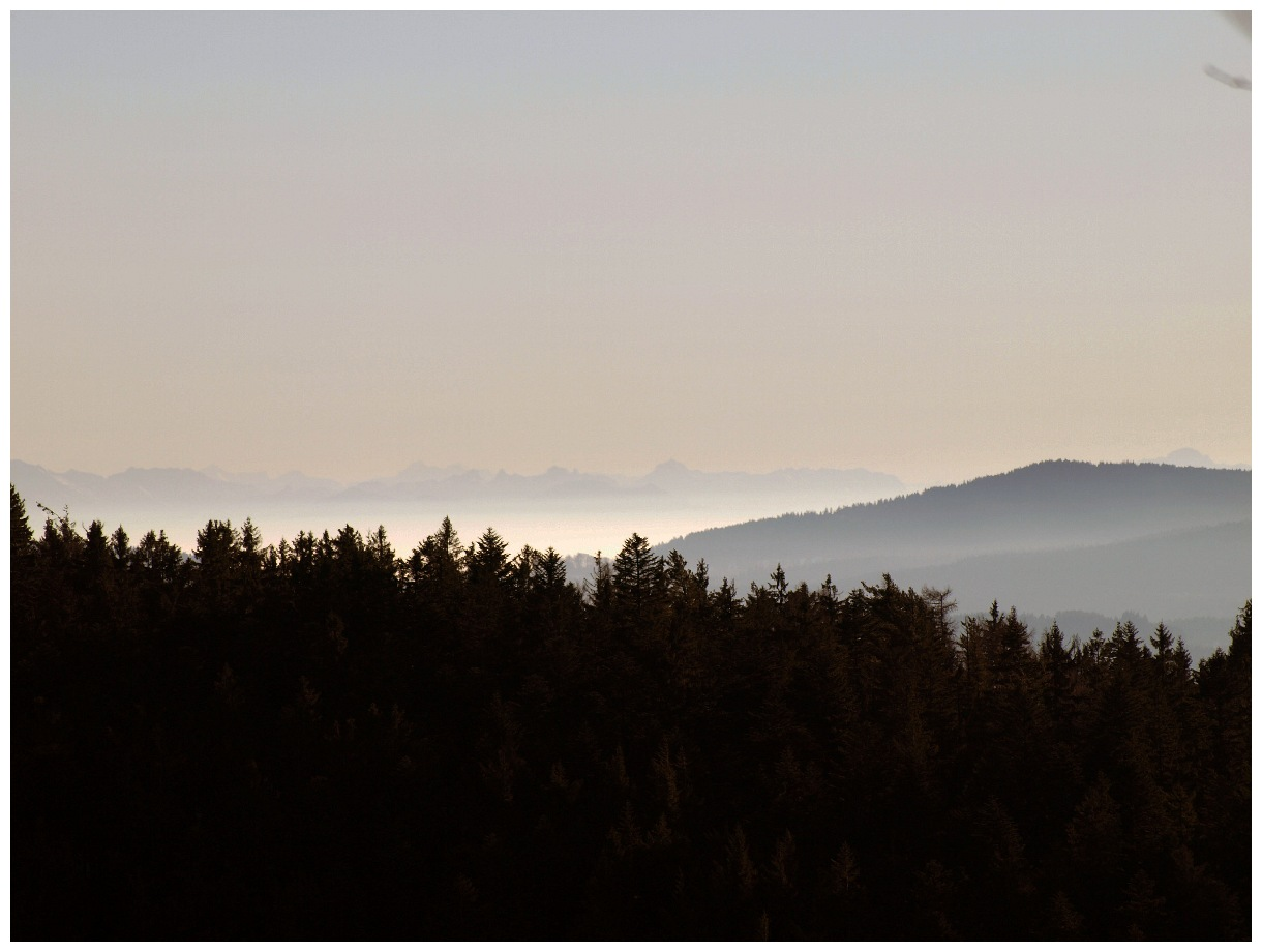 http://www.bayerwaldwandern.de/januar11/16jan11_15.jpg