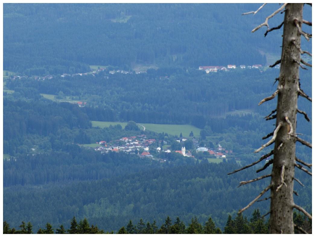 http://www.bayerwaldwandern.de/juni12/7juni12_08.jpg
