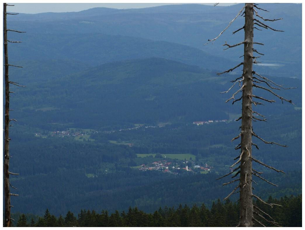 http://www.bayerwaldwandern.de/juni12/7juni12_10.jpg