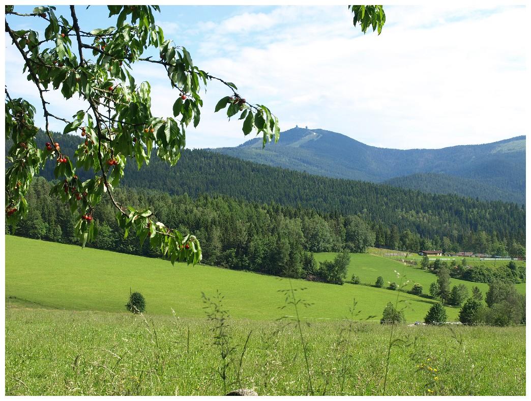 http://www.bayerwaldwandern.de/juni12/7juni12_24.jpg