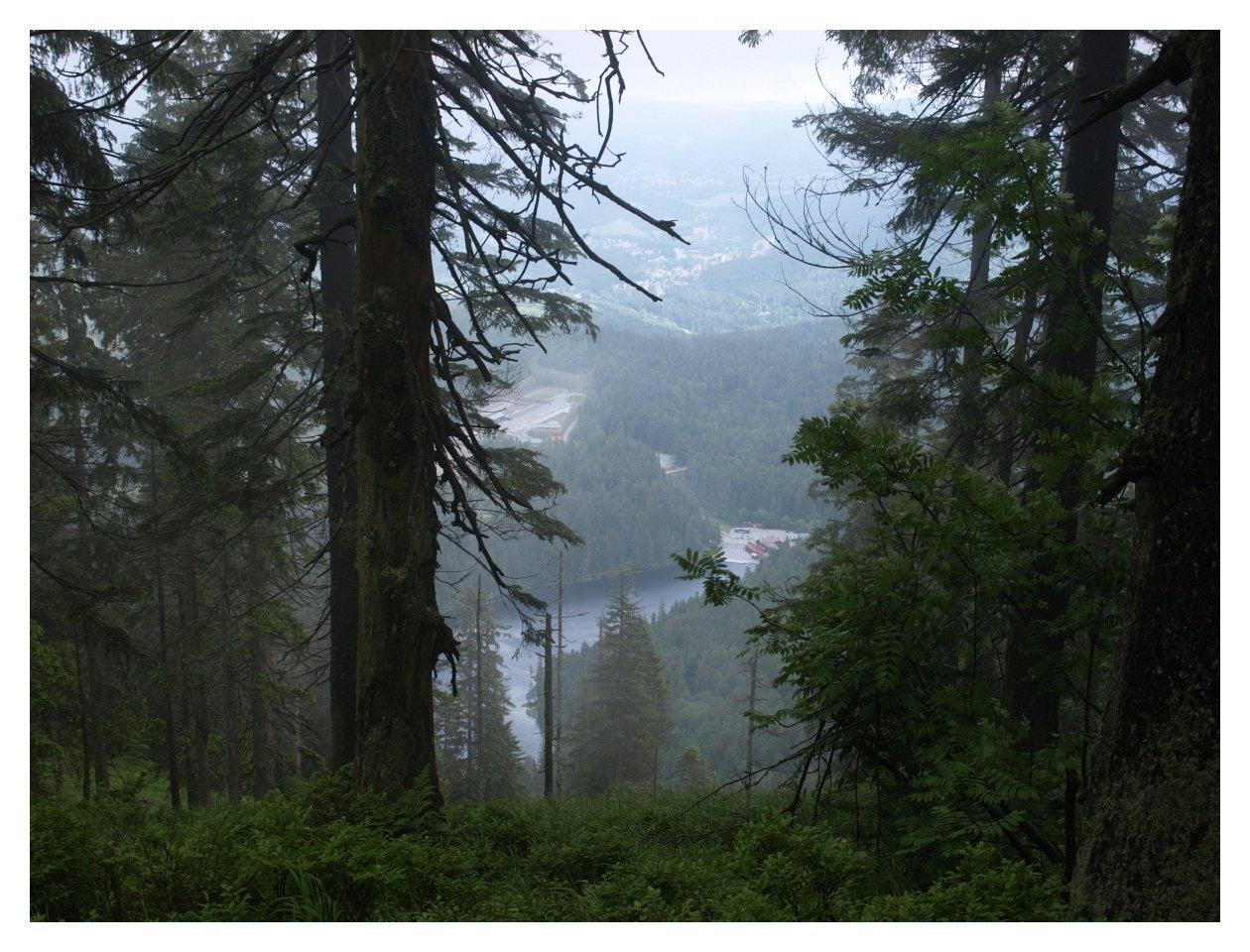 http://www.bayerwaldwandern.de/juni15/23juni15_5.jpg