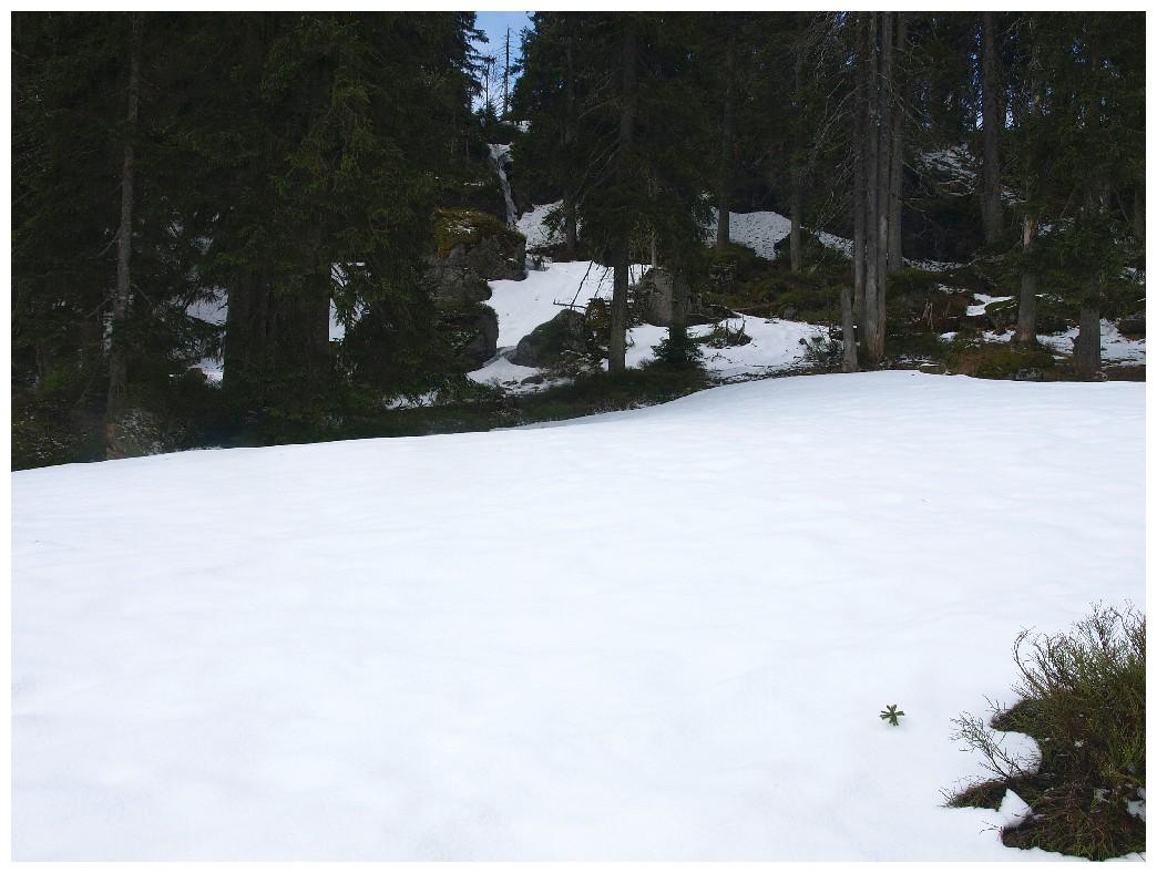 http://www.bayerwaldwandern.de/mai12/17mai12_11.jpg