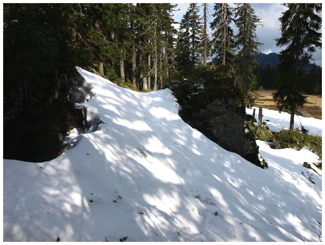 http://www.bayerwaldwandern.de/mai12/17mai12_19.jpg