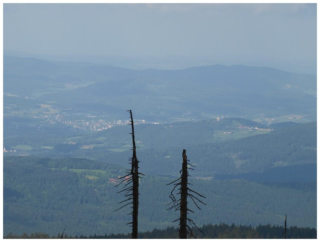 http://www.bayerwaldwandern.de/mai12/17mai12_23.jpg
