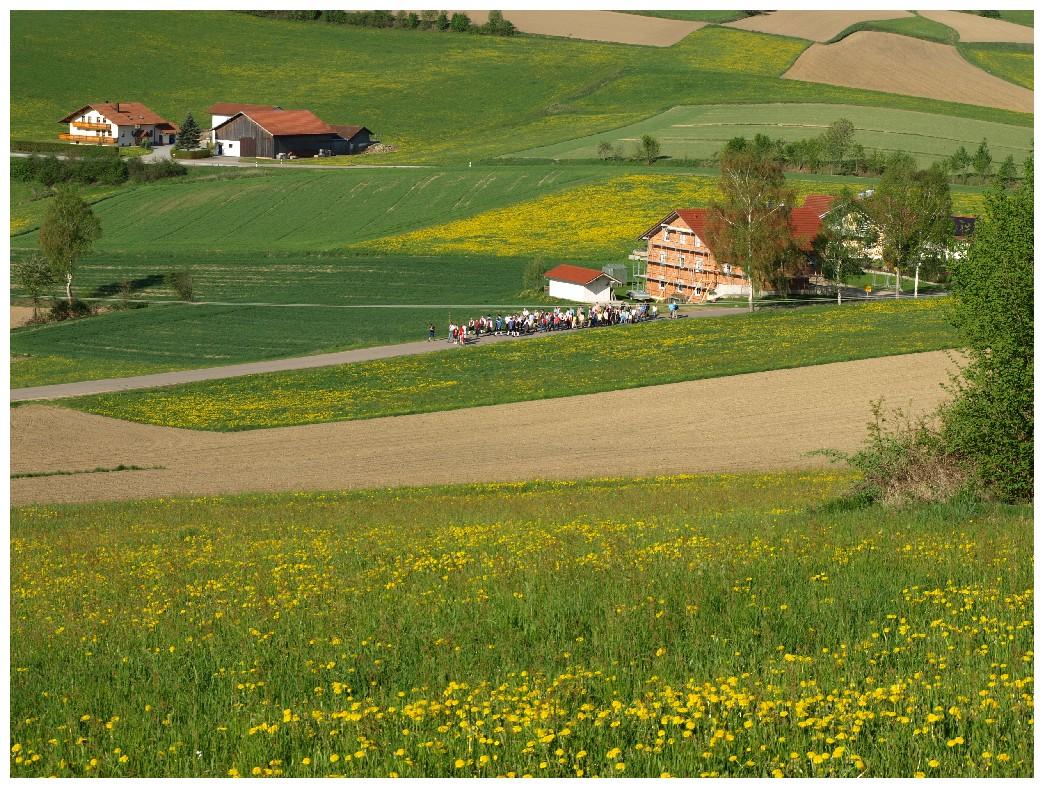 http://www.bayerwaldwandern.de/mai12/1mai12_02.jpg