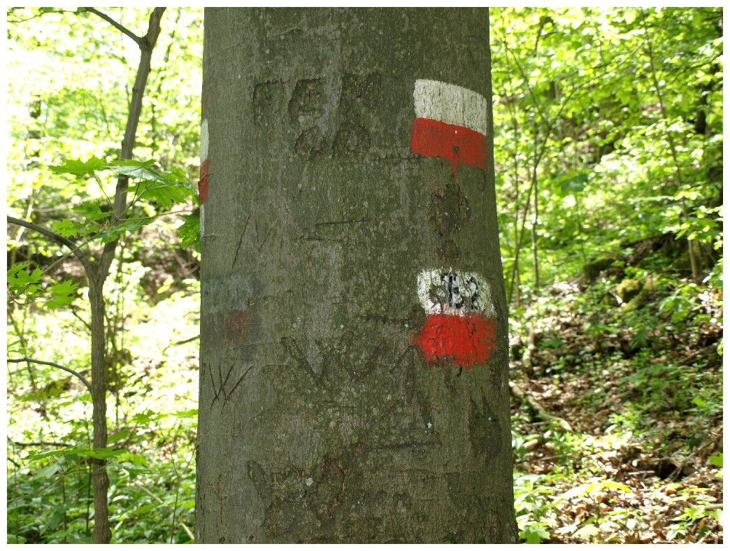 http://www.bayerwaldwandern.de/mai12/1mai12_14.jpg