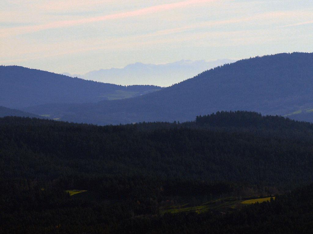 http://www.bayerwaldwandern.de/november10/november10_16.jpg