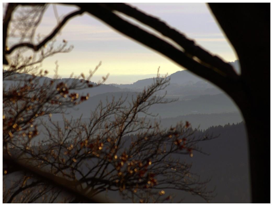 http://www.bayerwaldwandern.de/november10/november10_19.jpg
