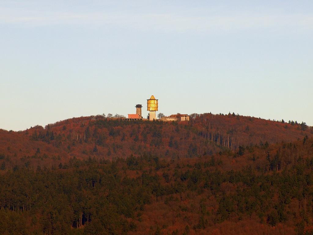 http://www.bayerwaldwandern.de/november11/13nov11_07.jpg
