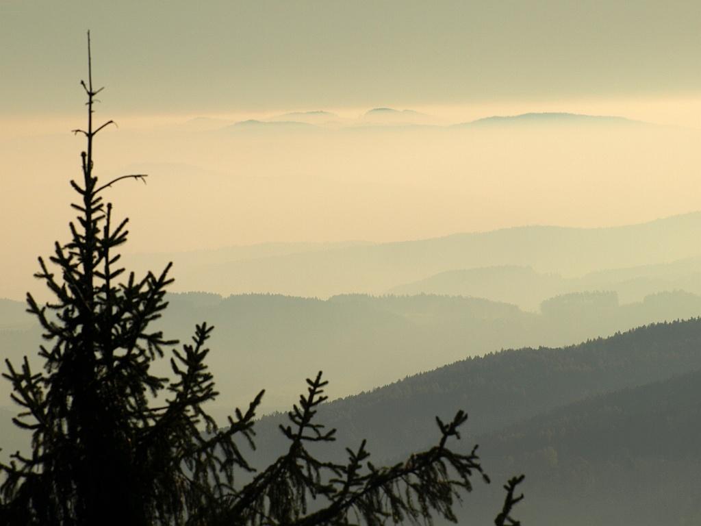 http://www.bayerwaldwandern.de/november11/13nov11_09.jpg