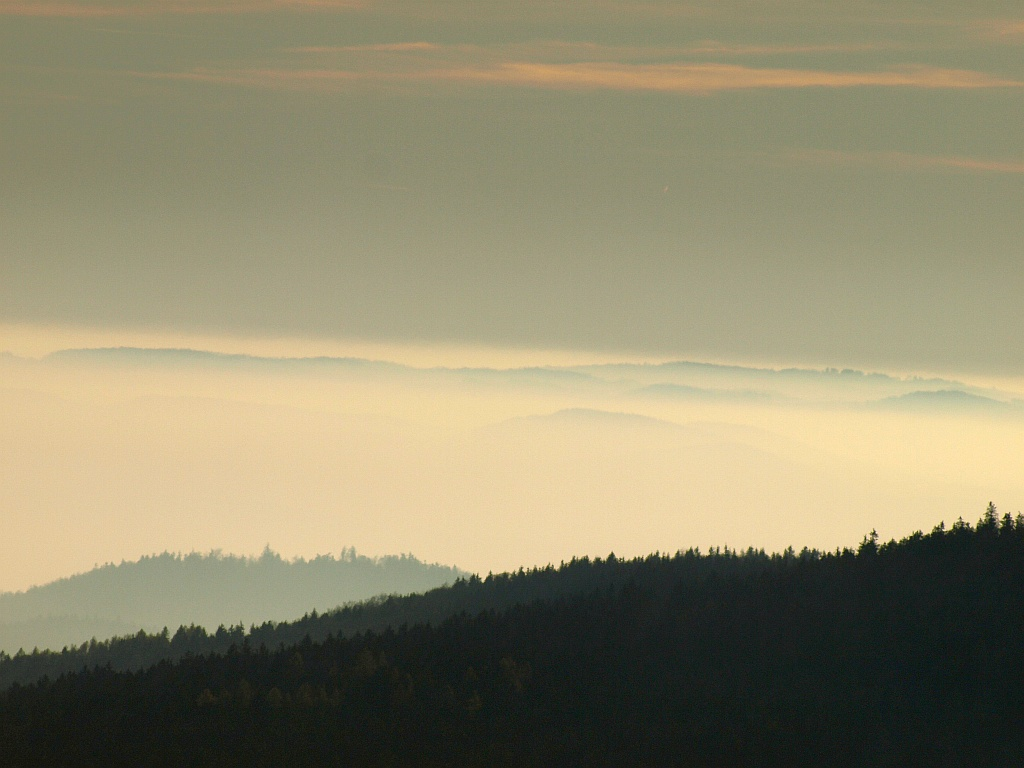 http://www.bayerwaldwandern.de/november11/13nov11_12.jpg