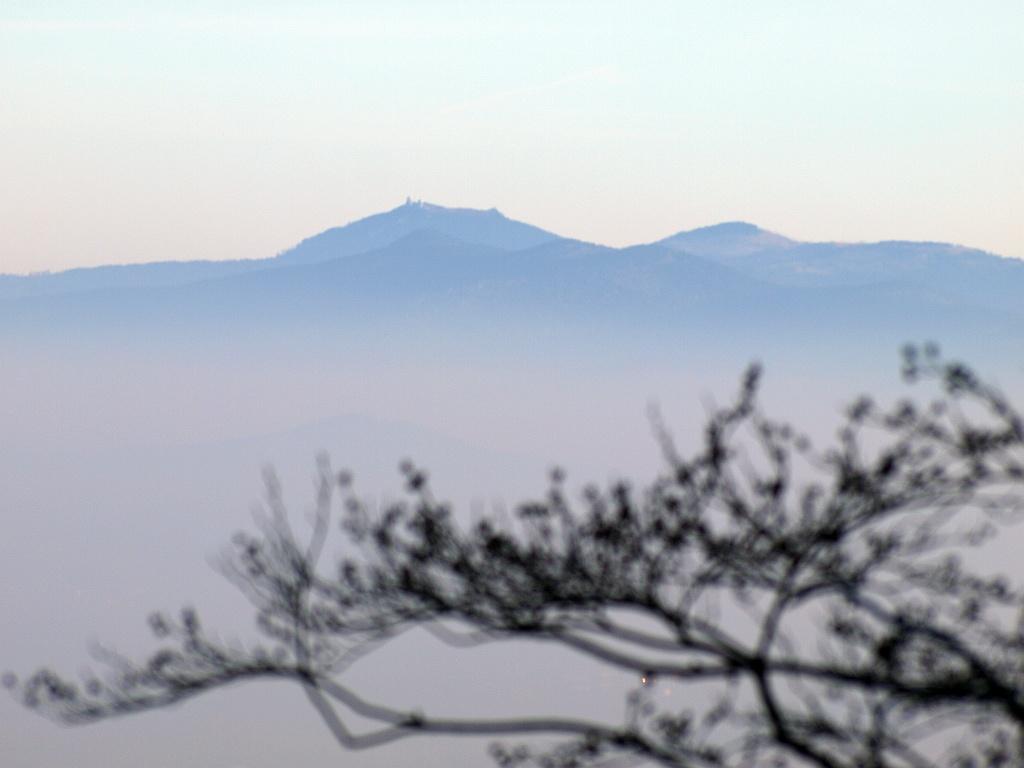 http://www.bayerwaldwandern.de/november11/13nov11_16.jpg