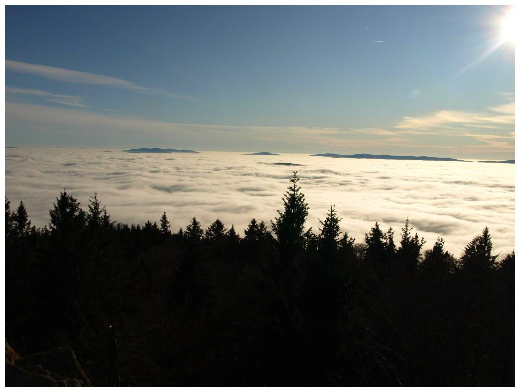 http://www.bayerwaldwandern.de/november11/23nov11_04.jpg