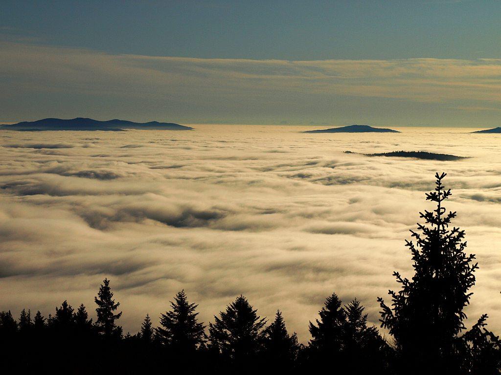 http://www.bayerwaldwandern.de/november11/23nov11_06.jpg