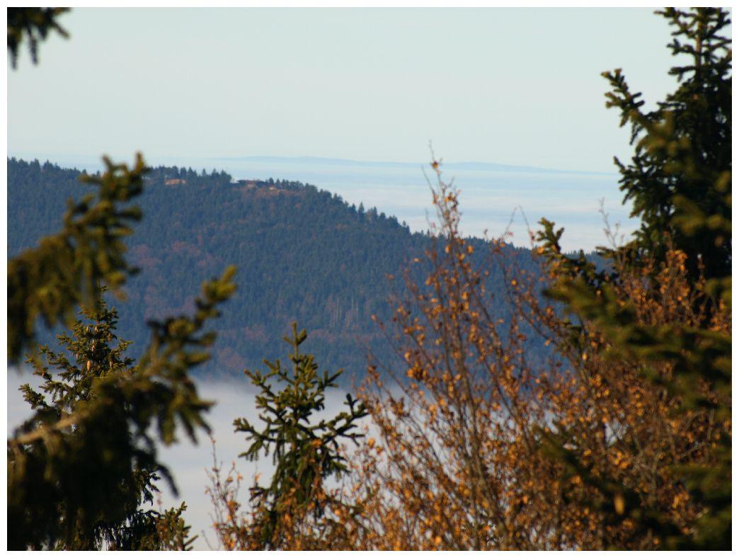http://www.bayerwaldwandern.de/november11/23nov11_10.jpg
