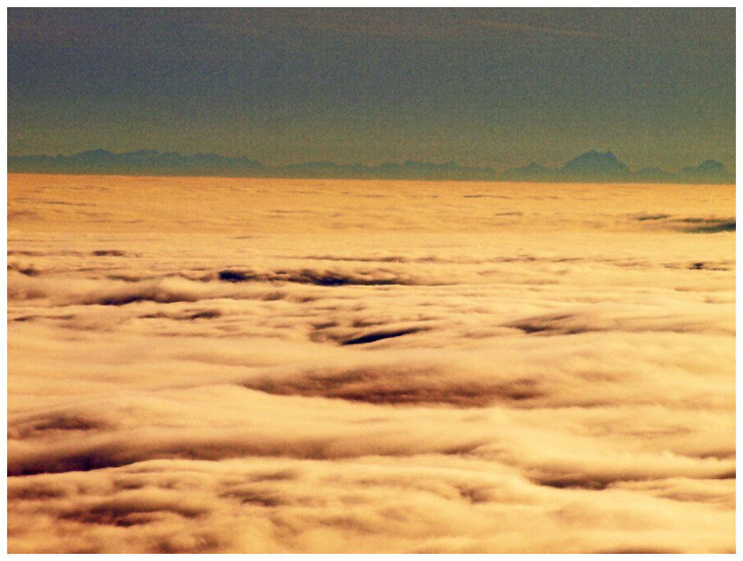 http://www.bayerwaldwandern.de/november11/23nov11_13.jpg