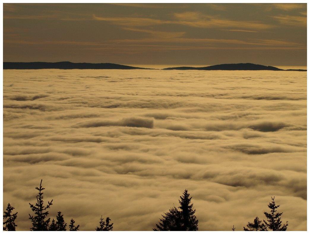 http://www.bayerwaldwandern.de/november11/23nov11_15.jpg