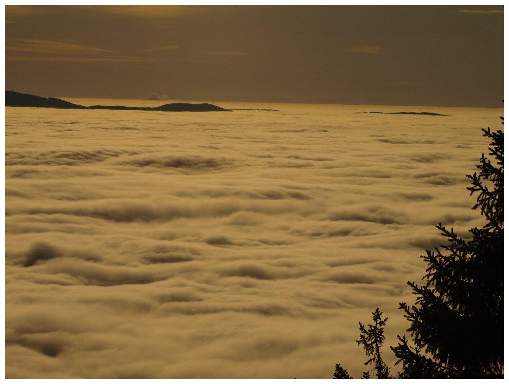 http://www.bayerwaldwandern.de/november11/23nov11_16.jpg