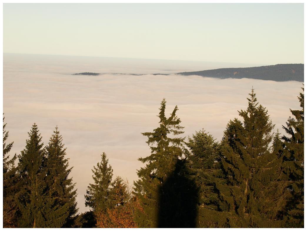 http://www.bayerwaldwandern.de/november11/23nov11_20.jpg