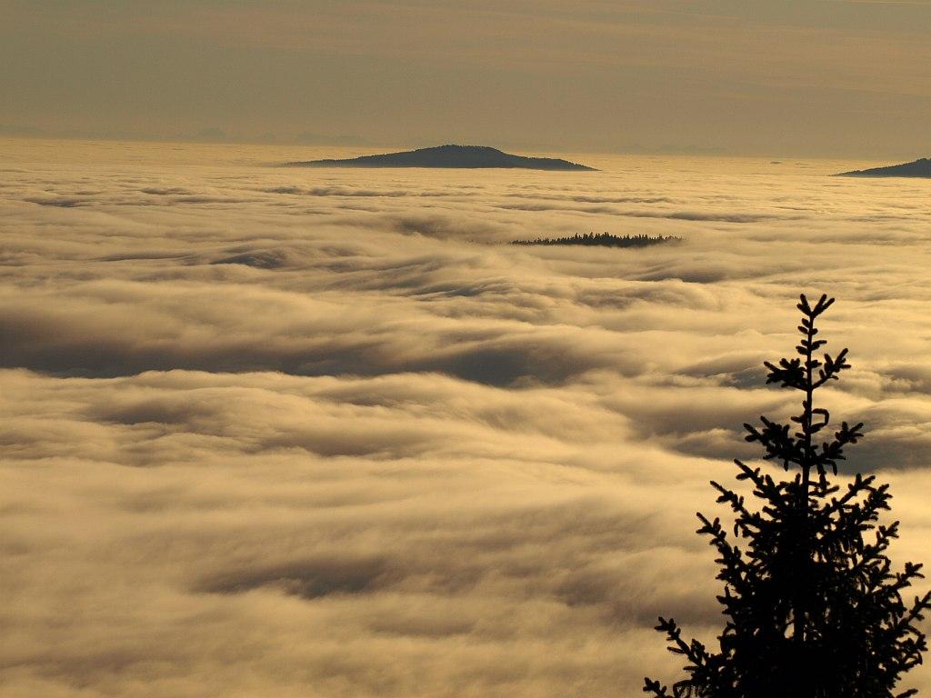http://www.bayerwaldwandern.de/november11/23nov11_24.jpg
