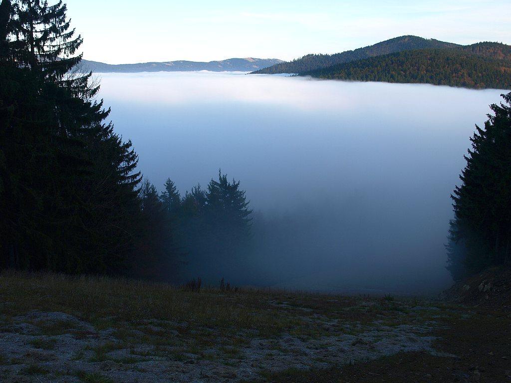 http://www.bayerwaldwandern.de/november11/23nov11_30.jpg