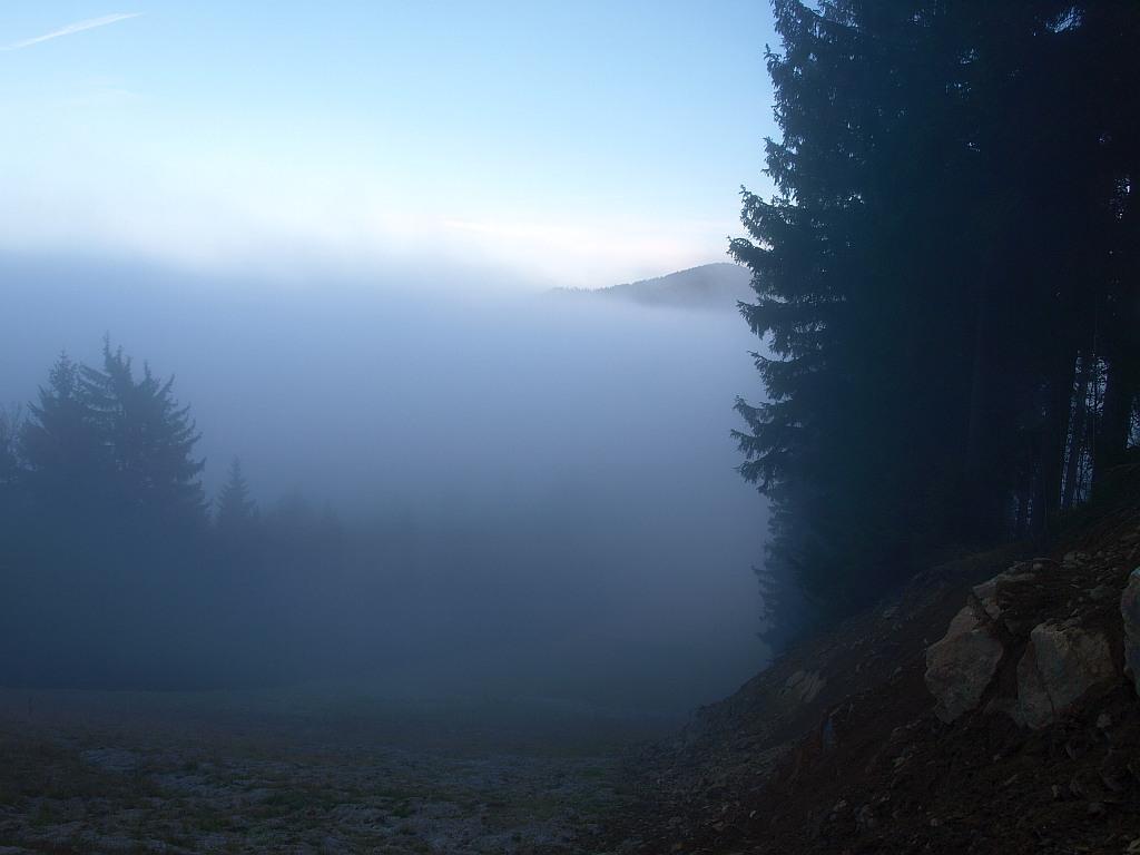 http://www.bayerwaldwandern.de/november11/23nov11_31.jpg