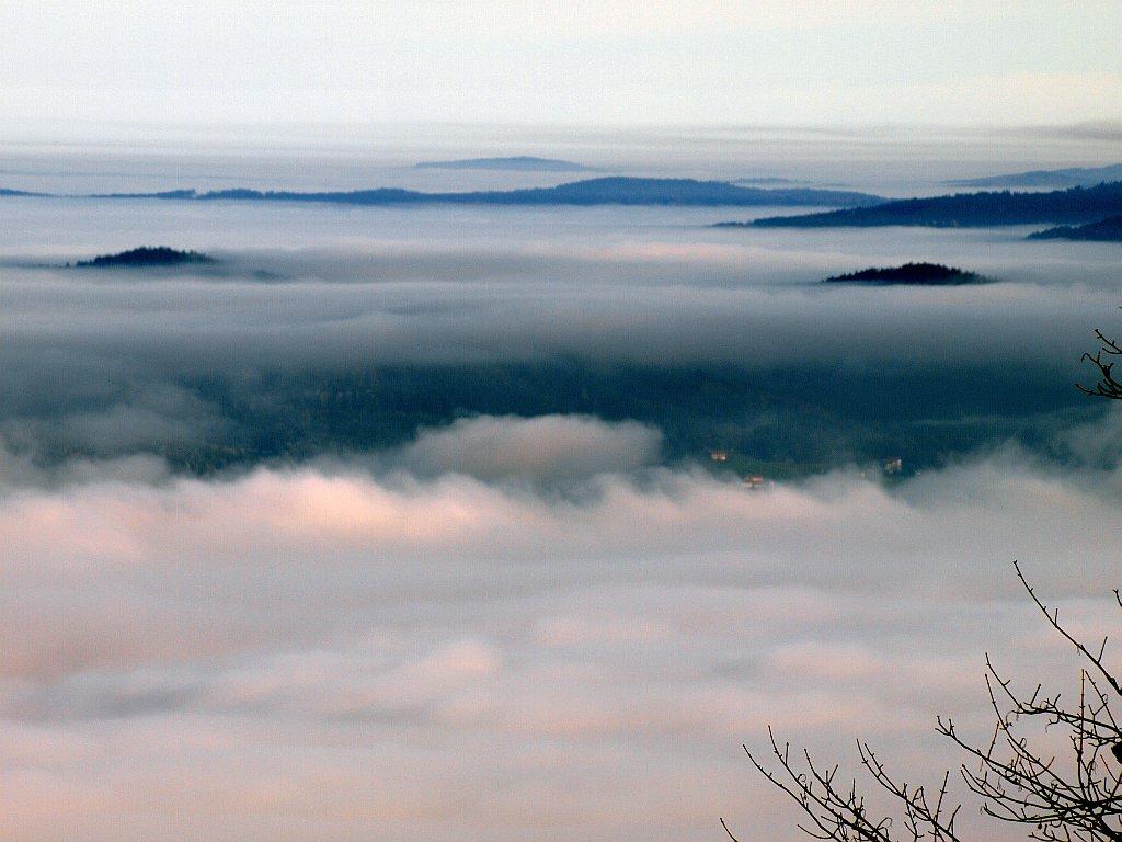 http://www.bayerwaldwandern.de/november11/24nov11_04.jpg