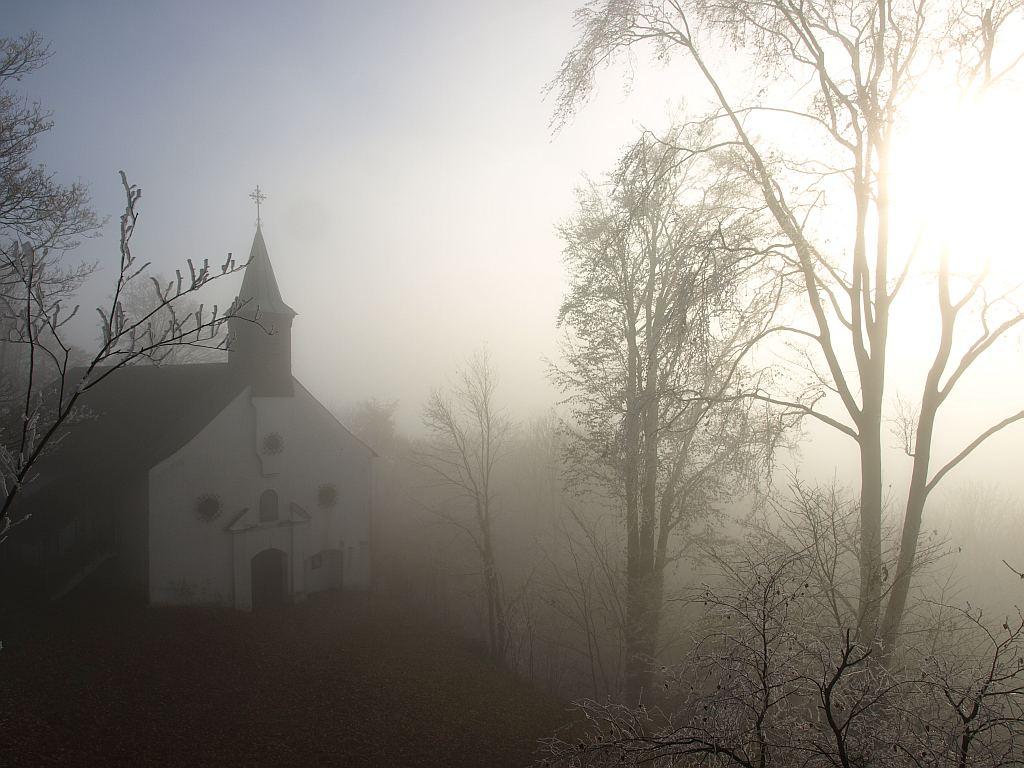 http://www.bayerwaldwandern.de/november11/24nov11_12.jpg