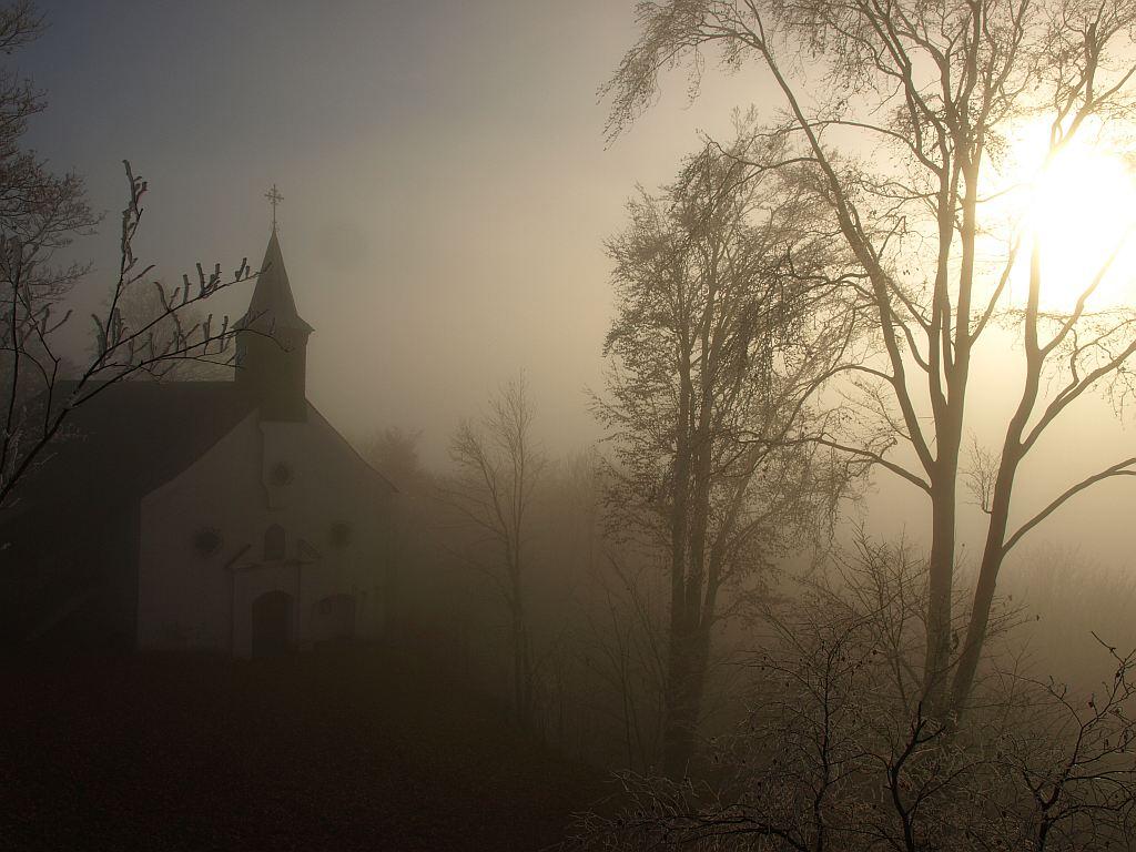 http://www.bayerwaldwandern.de/november11/24nov11_15.jpg