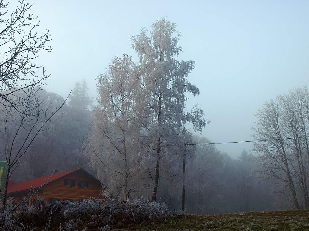 http://www.bayerwaldwandern.de/november11/24nov11_20.jpg